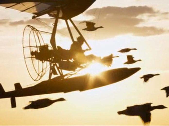 Кадр из фильма «Расправь крылья»