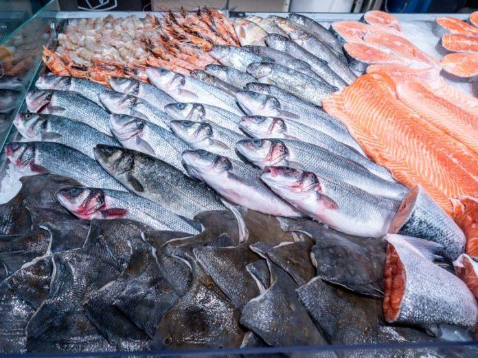 Рыба из «Находки»