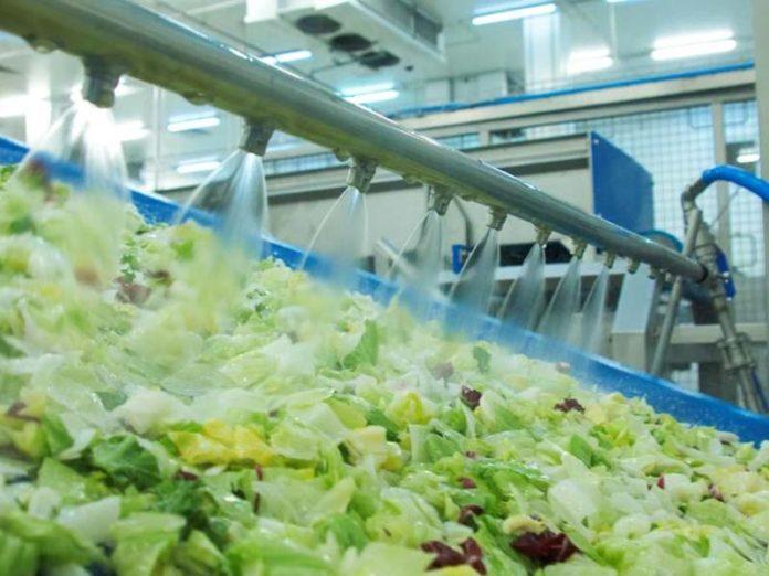Как моют листья салата