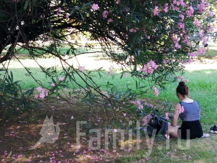 Девушка под цветущим деревом